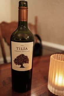 Organic Tilia Cabernet from Mendoza, Argentina that we both loved!