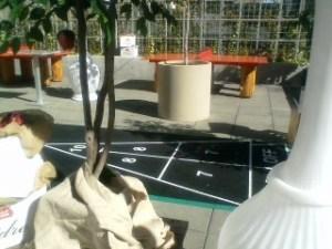 Shuffleboard court.