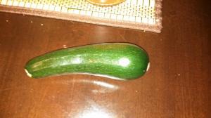 Mikayla's prized zucchini