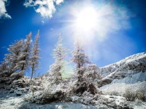 Sunny but snowy.
