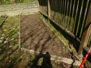Cleared bed #2.  Will be used for sunny plants.