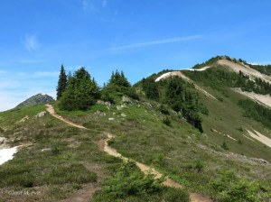 The ridge trail to the top