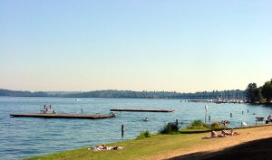 Madrona Park on a beautiful Sunday!