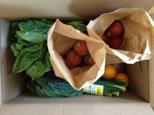 Box of fresh veggies and fruits.