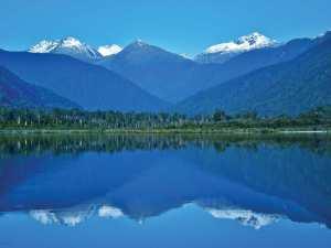 New-Zealand---back-up