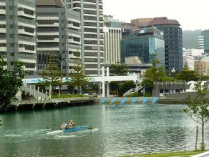 Rowers in Wellington.