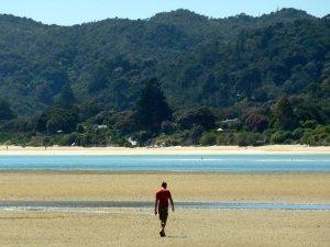 Bryan checking out the approaching tide in Awaroa Bay