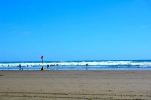 Beautiful Piha Beach