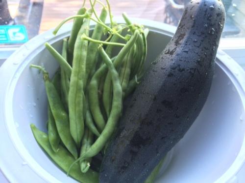 So many green beans.