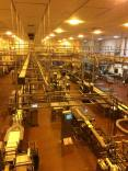 Inside the cheese factory