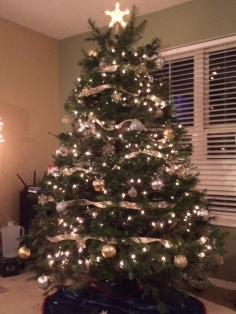 Our perfect tree!