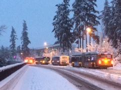 Proof that the eastside is icier. All of these buses are stuck here.