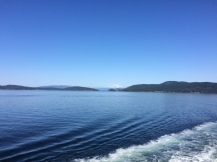 Gotta love all of those ferry pictures