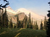 Good morning Rainier