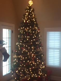 Great looking tree this year.