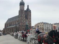 Quaint carriages