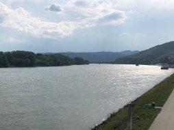 Danube from Krems