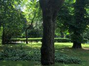 Gorgeous park