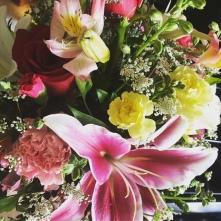 My beautiful flowers!