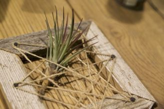 Air plant frame...interesting but kind of cool